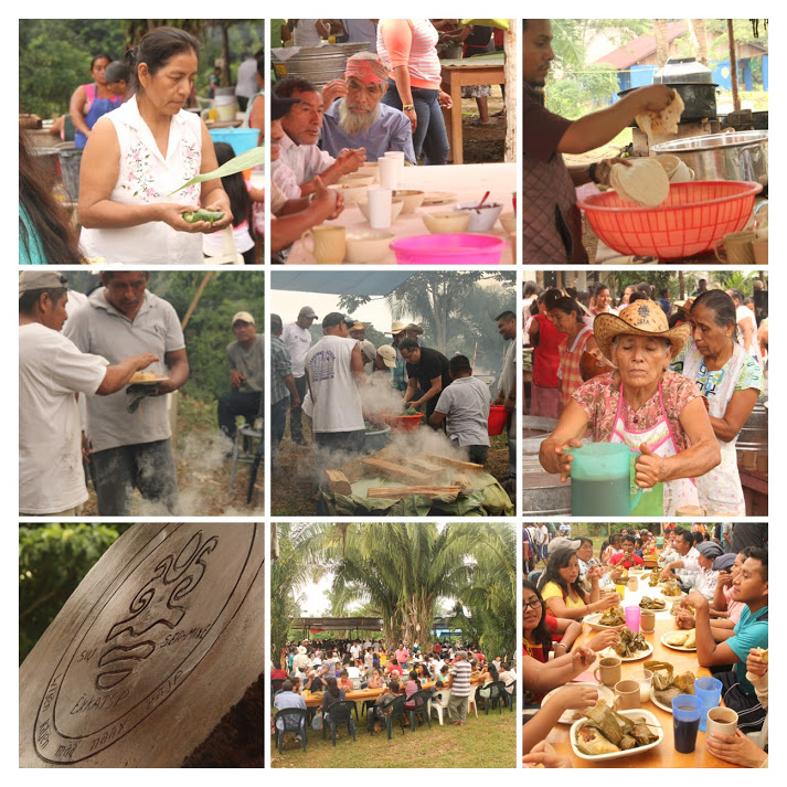 IMG 3382 COLLAGE